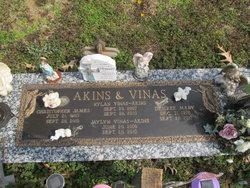 "JayLyn Vinas ""JayJay"" Akins"