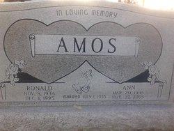 Ann Amos
