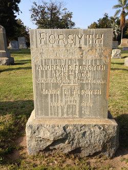 Mary B Forsyth