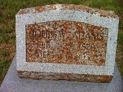 John Wellington Adams