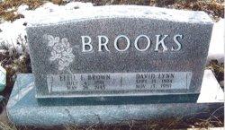 David Lynn Brooks