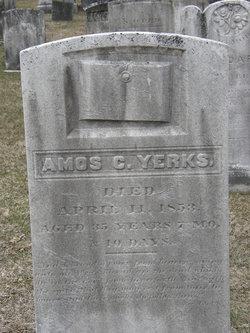Amos Clark Yerks
