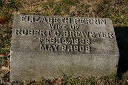 Elizabeth P <I>Perrin</I> Brewster