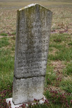 Mary Elizabeth <I>Haddock</I> Adams