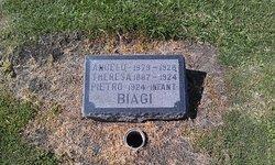 Pietro Biagi