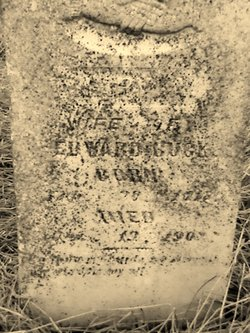 Mary Anne <I>Venters</I> Buck