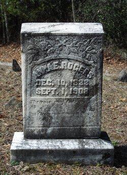 Anne E Rogers