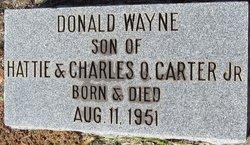 Donald Wayne Carter