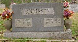 "Hattie Leona ""Dee"" <I>Sprinkle</I> Anderson"