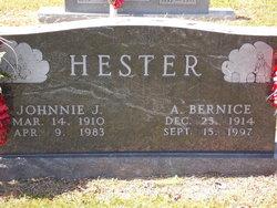 Allie Bernice <I>Strickland</I> Hester