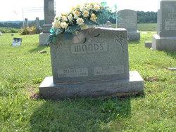 Alfred John Woods