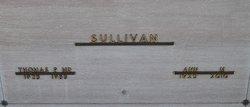 Ann M Sullivan