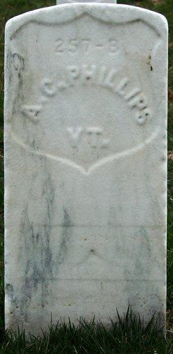 Pvt Amherst C Phillips