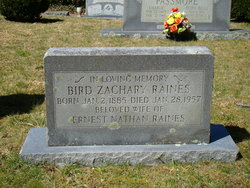 Bird Zachary Raines