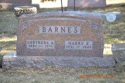 Harry E. Barnes