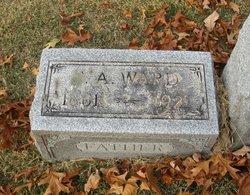 Sylvester A. Ward