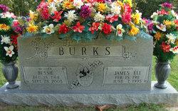 Bessie <I>Hammock</I> Burks