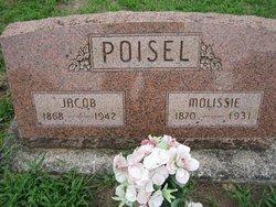 Molissie Jane <I>Clark</I> Poisel