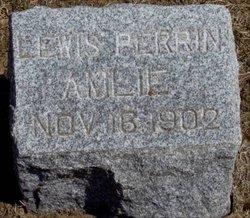 Lewis Perrin Amlie