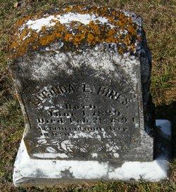 Lucinda L. <I>Davis</I> Hines