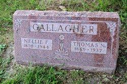 Thomas N Gallagher