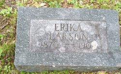 Erika Larson
