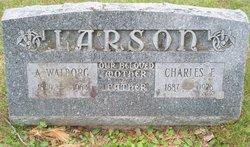 Charles F. Larson