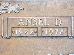 Ansel D Anderson