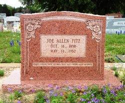 Joe Allen Fitz