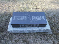 Harry G Lowes