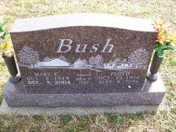 Mary <I>Elliott</I> Bush