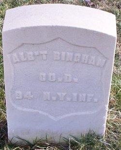 Albert Bingham