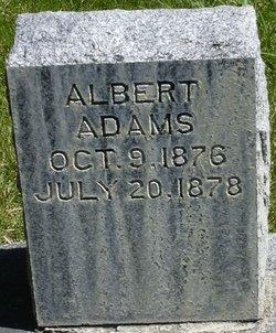Albert Adams