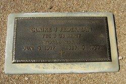 Claire J Federman