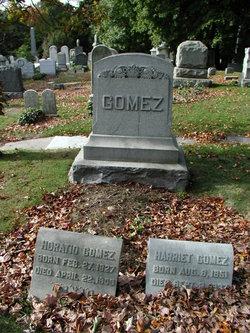 Horatio Gomez