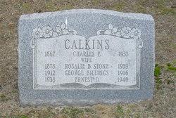 Rosalie Beatrice <I>Stone</I> Calkins