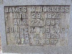 James W Boggess