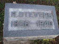 Rhoda Ann <I>Green</I> Stevens