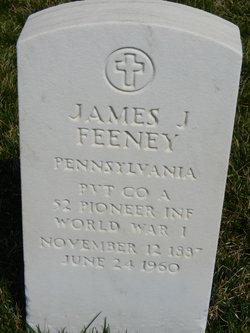 James J Feeney
