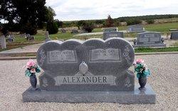 Mickey Wayne Alexander