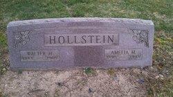 Amelia Mary <I>Hahn</I> Hollstein