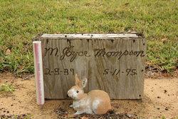 """Mary Joyce """"Joyce"""" <I>Airhart</I> Thompson"""