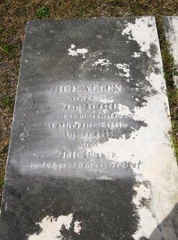 Hinchea Elbert Allen