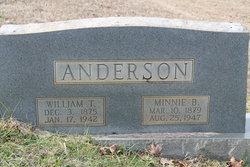 Minnie B Anderson