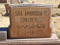 Ambrosia <I>Griego</I> Contreras