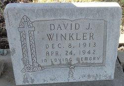 David J Winkler