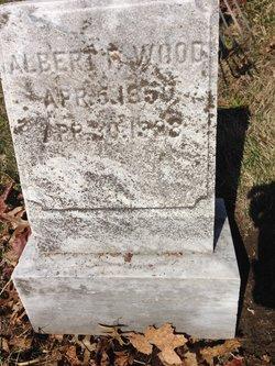 Albert F Wood