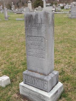 Catherine <I>Trout</I> Hawkins