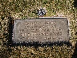 Robert David Jones
