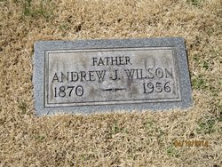 Andrew J Wilson